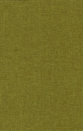 Mustard 06