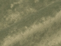Moresco-3685-21-bruin-grijs