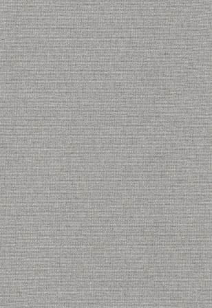 Olbia - Grey