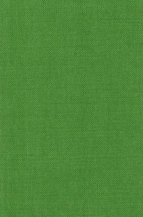 Shadow Green 55