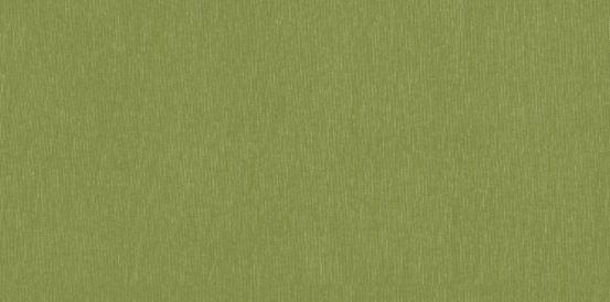 Silvertex 5019 celery.jpg