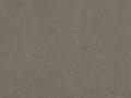 Silvertex 1010 beige.jpg